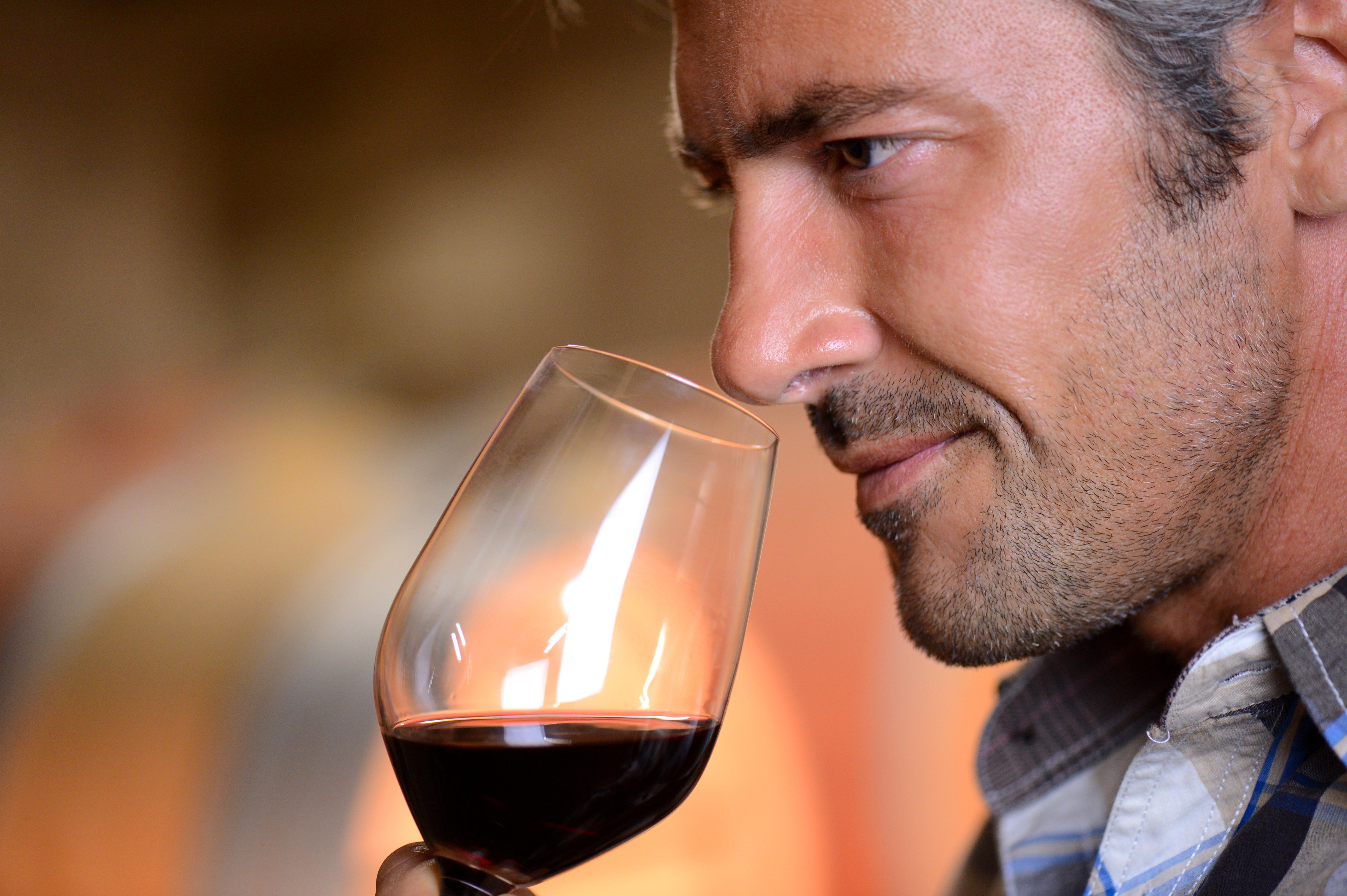 Catar el vino en nariz y en boca es fundamental para parecer que sabes de vino FUENTE: pixabay.com