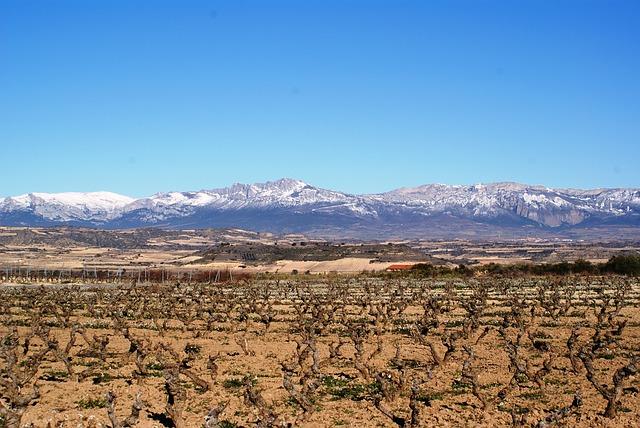 Territorio del vino La Rioja