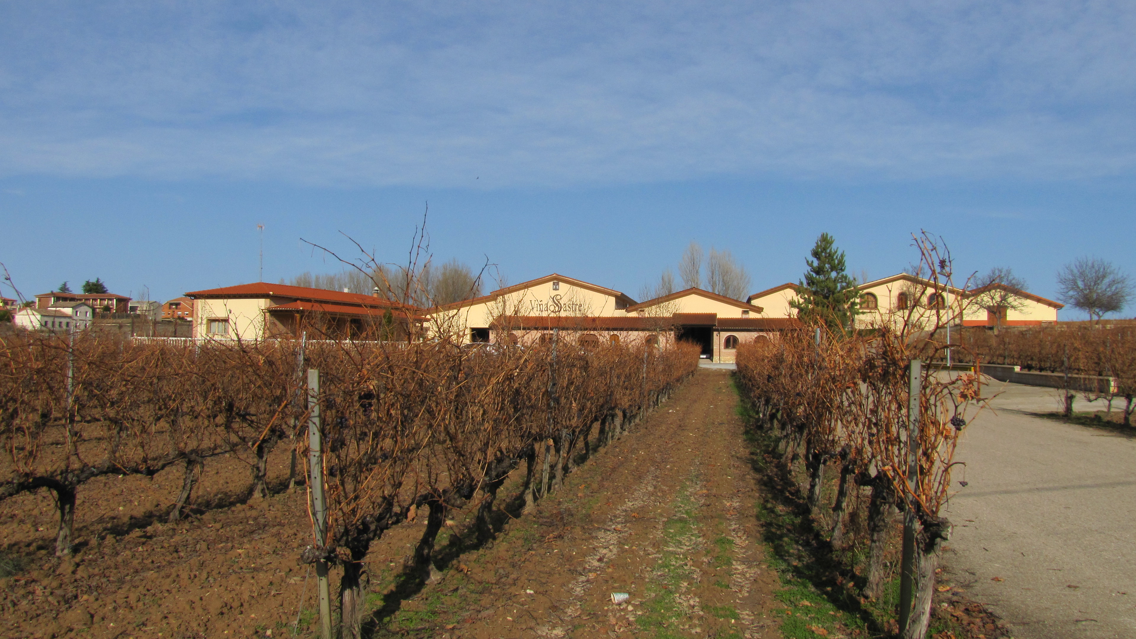 Terrotorio del vino Ribera del Duero