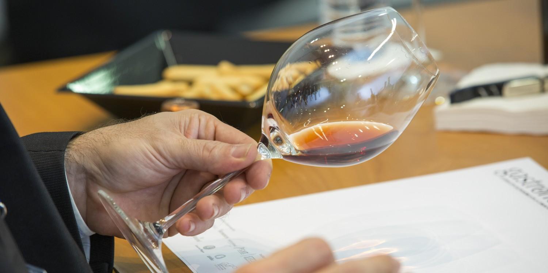 Wine Lovers Experiencie Gastronóma