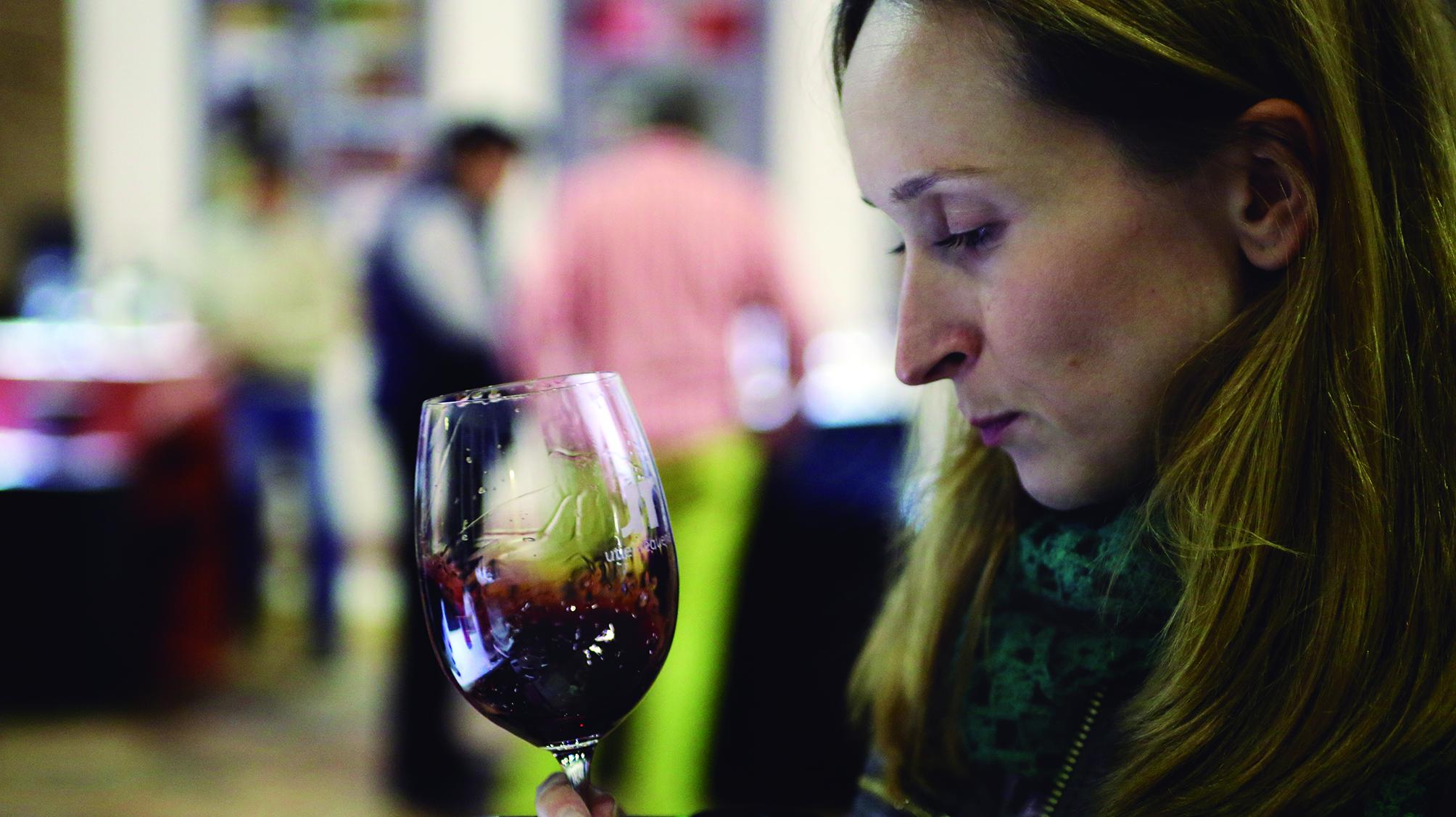 Degustación vino