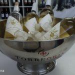 Feria Requenense del Vino FEREVIN (25-28/08/2016) 4