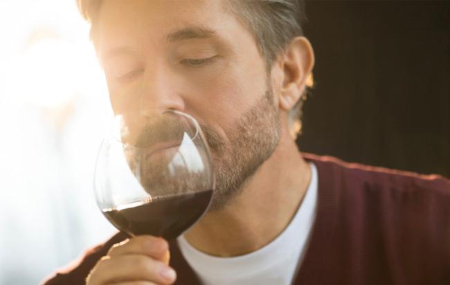 ¿Conoces las series aromáticas de los vinos?
