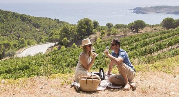 El enoturismo en España: perfil del turista e intereses