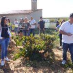 Instameet Igers Valencia en DO Utiel-Requena (08/10/2016) 5