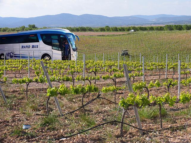 Escápate con el Bus del Vino durante los sábados de febrero