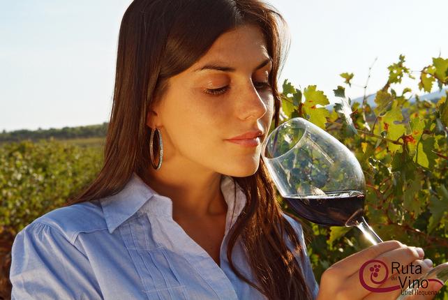 cata-vino-enoturismo