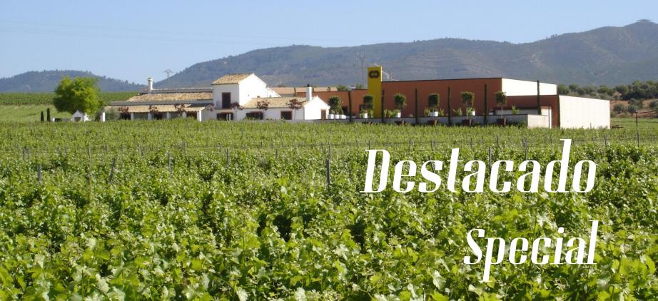 Utiel-Requena protagoniza el boletín de febrero de Rutas del Vino de España