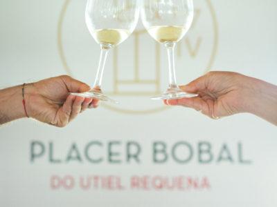 La DO Utiel-Requena consolida Placer Bobal como salón anual