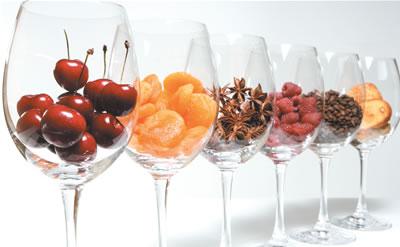3 claves para identificar los aromas del vino