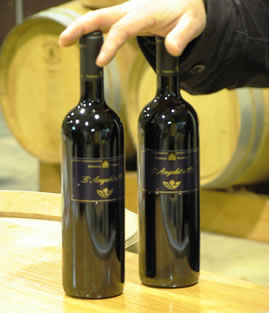 5 vinos ecológicos de Utiel- Requena que te enamorarán 4