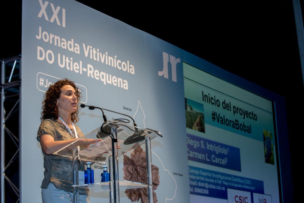 Utiel-Requena anuncia en su XXI Jornada Vitivinícola el Proyecto #ValoraBobal 0