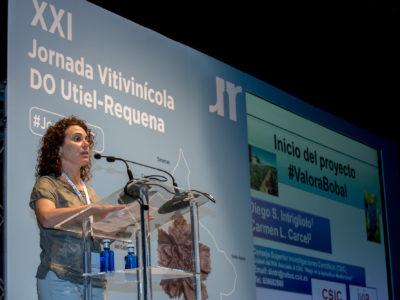 Utiel-Requena anuncia en su XXI Jornada Vitivinícola el Proyecto #ValoraBobal