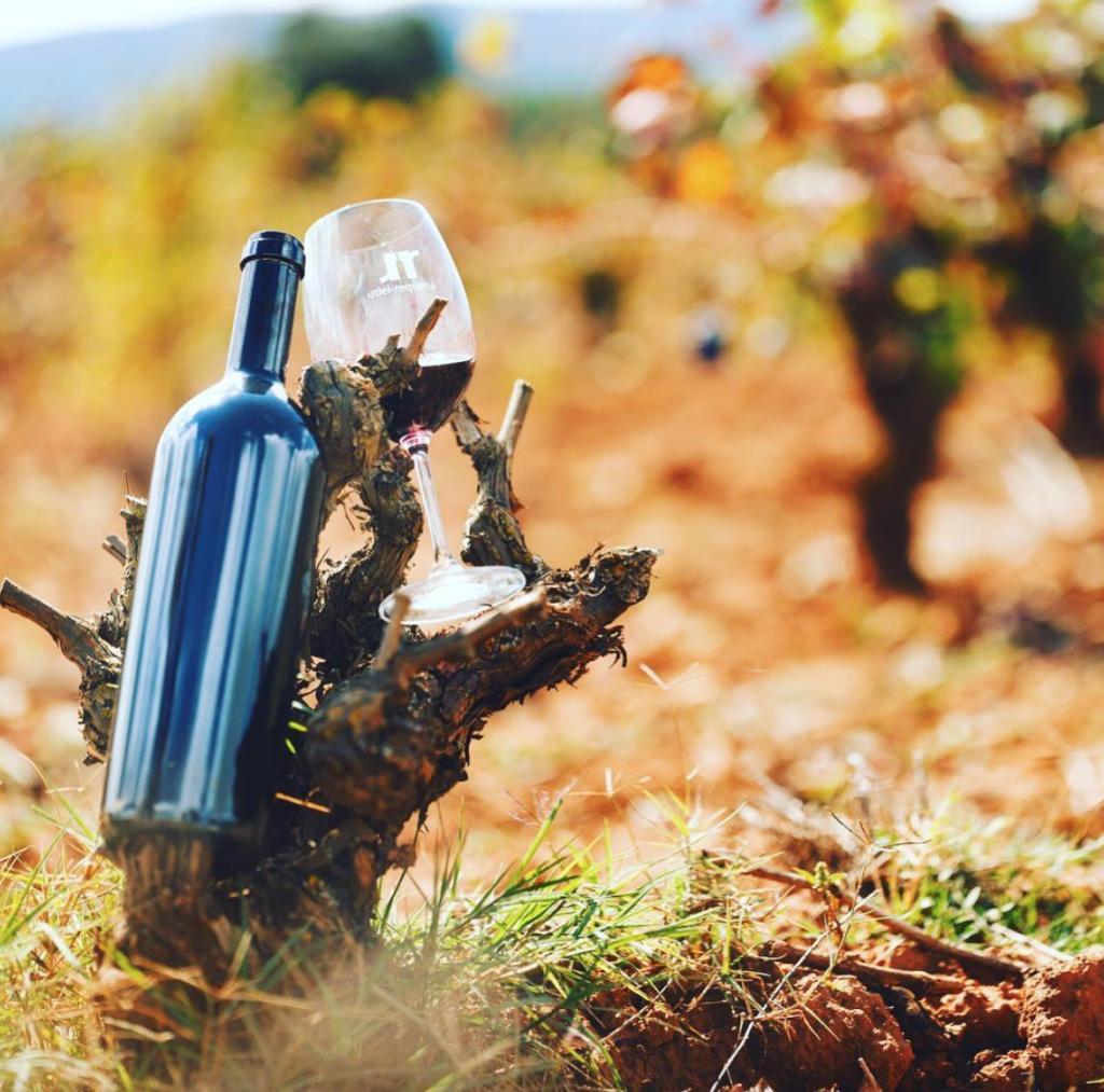 La importancia de la guarda de botella en el vino 0
