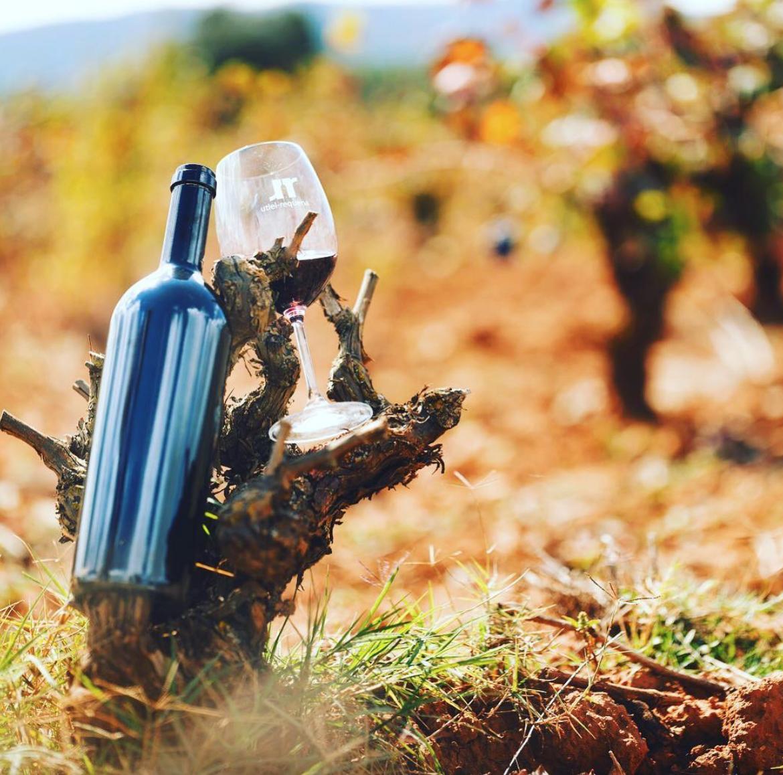 La importancia de la guarda de botella en el vino