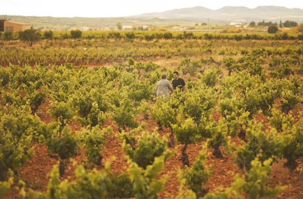 El mundo del vino rinde homenaje a los sanitarios españoles. 0