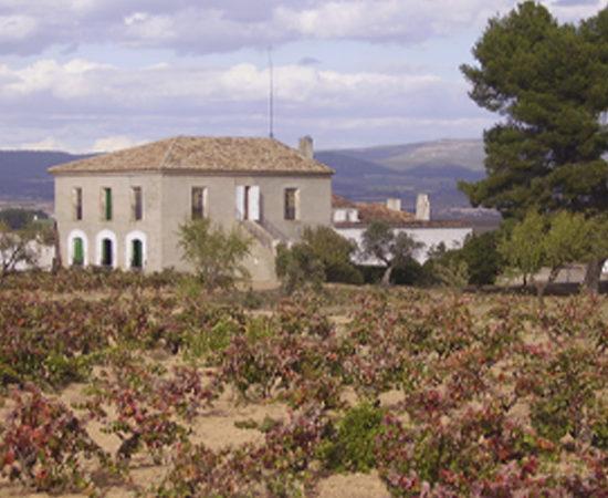 Bodega D.O. UtielRequena - Finca La Picaraza