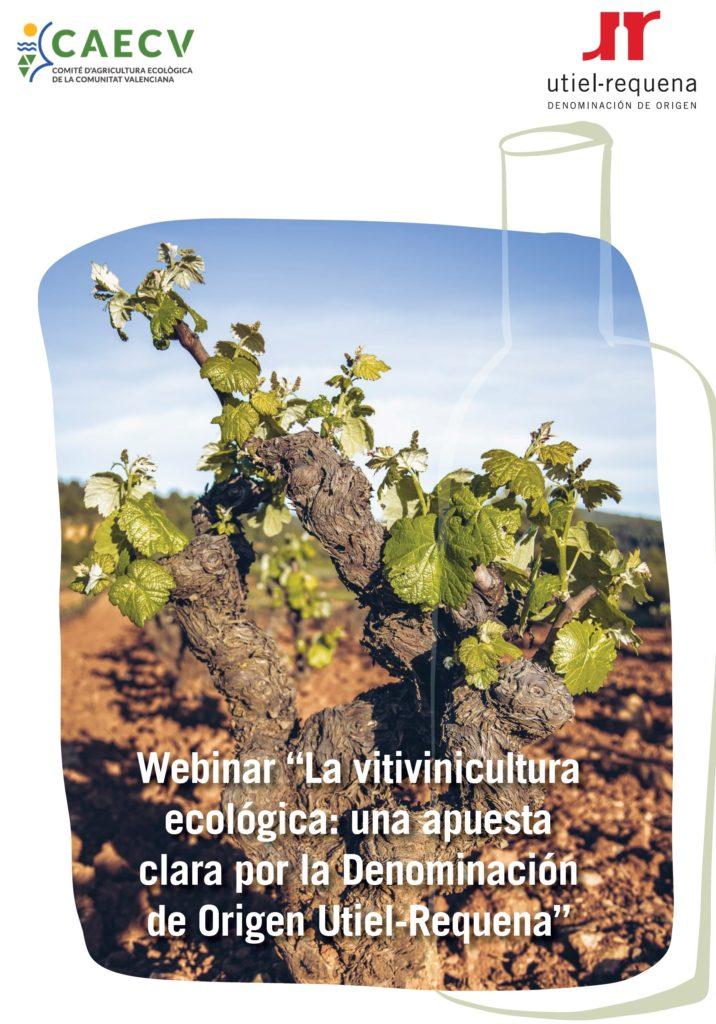La apuesta por la vitivinicultura ecológica, gran oportunidad para la DO Utiel-Requena 0